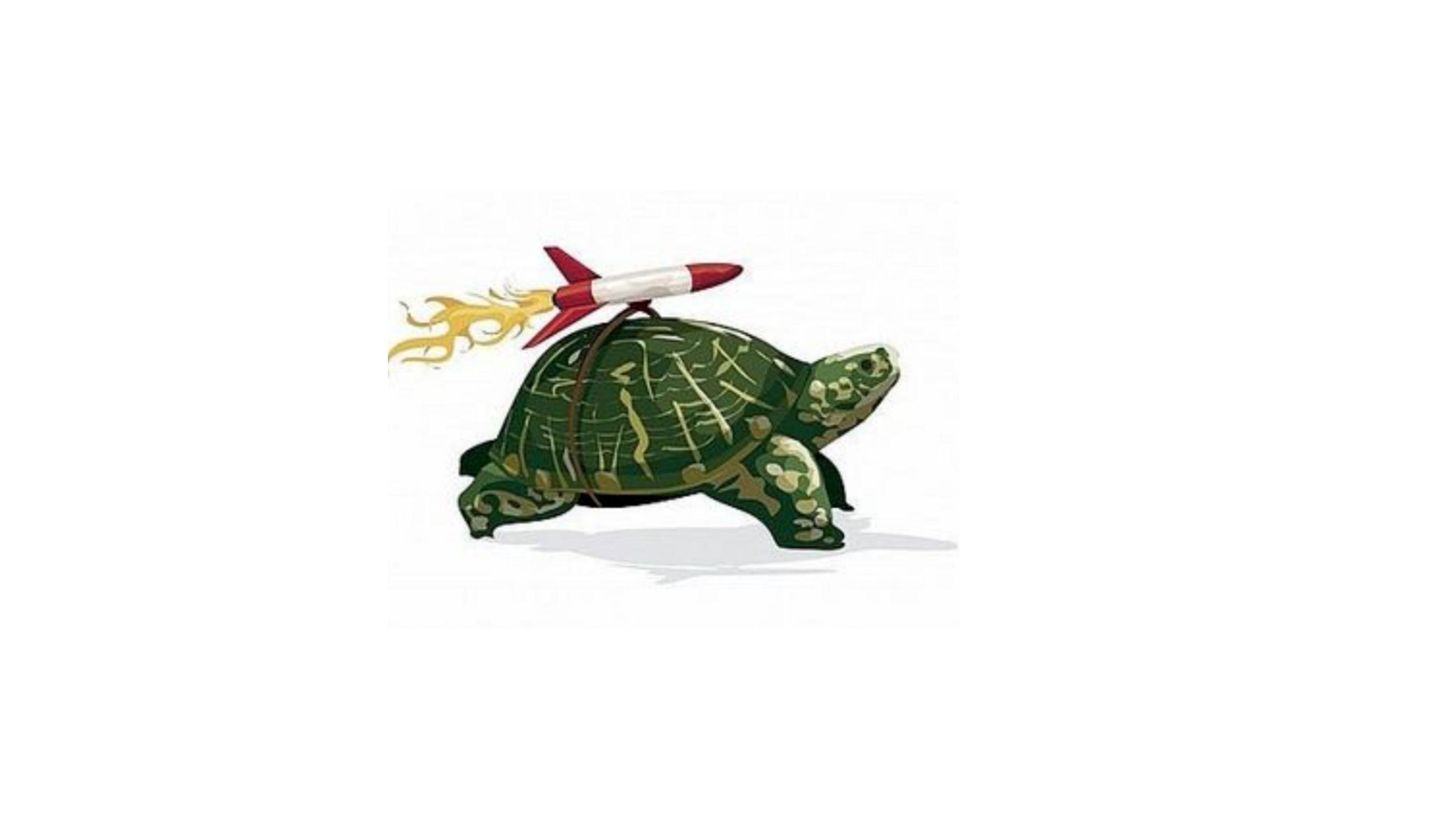 A cartoon tortoise with a rocket on its back denotes how different skills such as scanning can help you read faster in the IELTS exam.