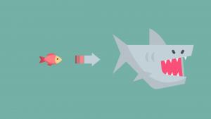 A small fish on the left is next to an arrow that leads to a shark to show that students often exaggerate in IELTS Cause Effect Essays